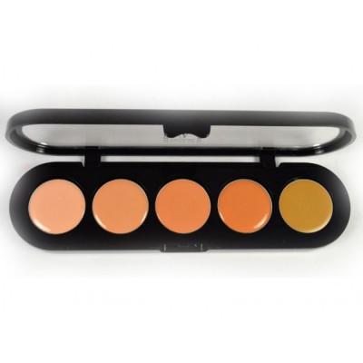 Палетка восковых корректоров, 5 цветов Make-Up Atelier Paris C/APJ золотистый 10г: фото